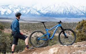 Giant Trance 29 2 2019山地越野自行车