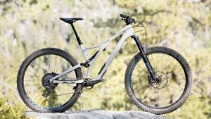 Specialized Stumpjumper Comp Carbon 29山地越野自行车