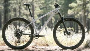 Specialized Fuse Expert 29山地自行车