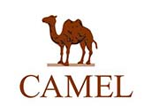 骆驼(CAMEL)登山鞋